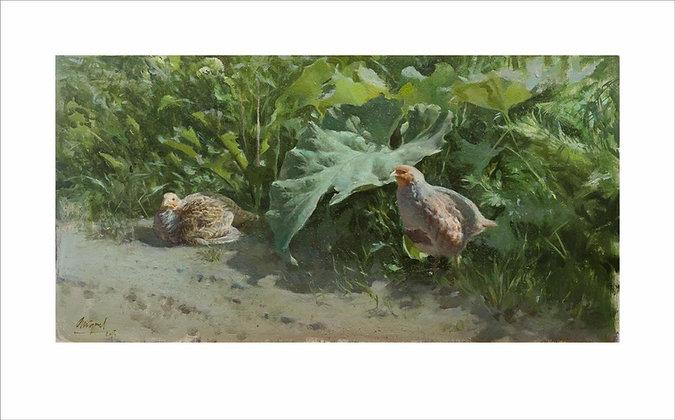 MIGUEL ANGEL MORALEDA | Partridge Amongst Leaves