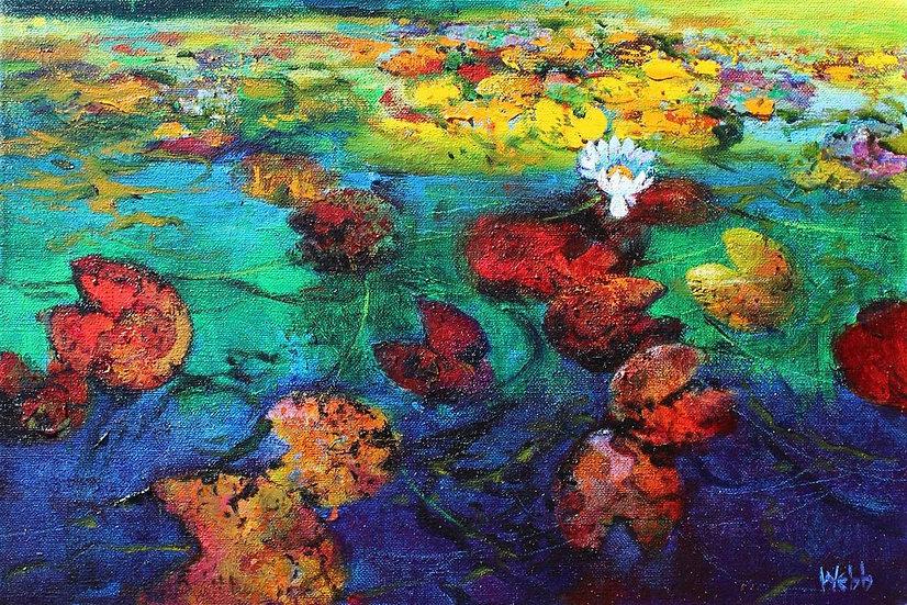 Phantom Waterlilies
