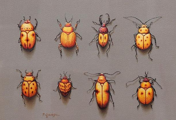 PAUL CZAINSKI | Orange Bugs
