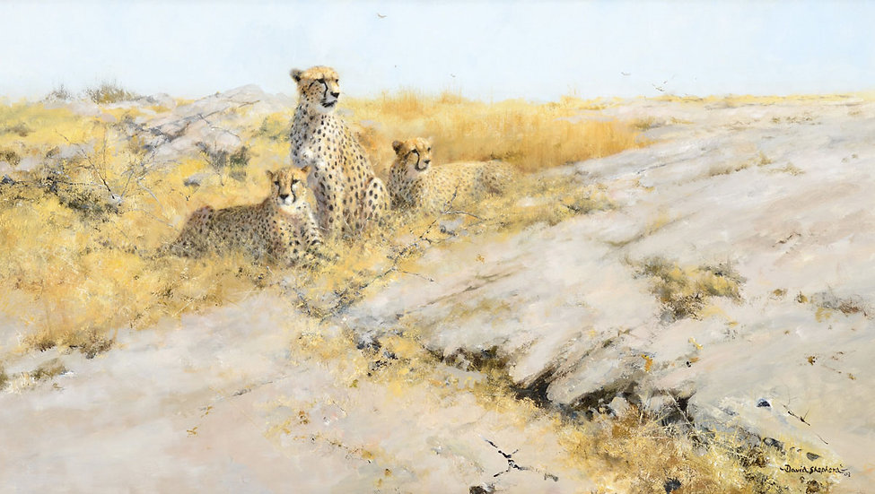 Cheetah Lookout, Painted in 2003