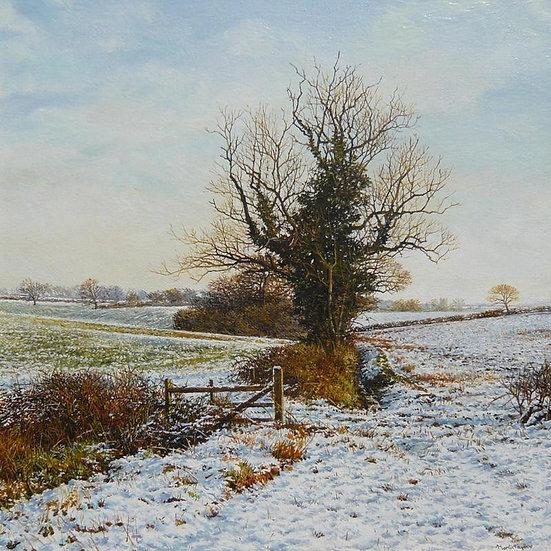 Snowy Landscape near Chapel Brampton