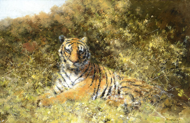 DAVID SHEPHERD   Tiger in the Bushes