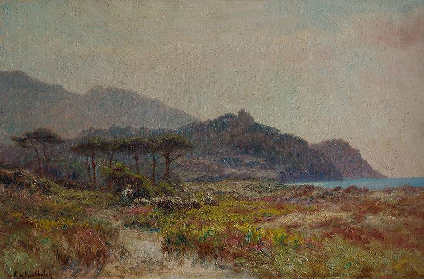 Berger et son Troupeau dans les dunes fleuries pres de la Ciotat