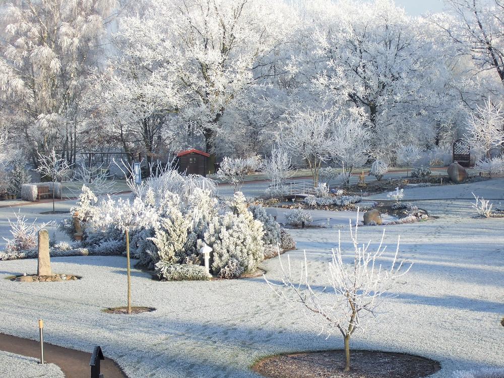Verzuckerter Kleinpark zur Winterzeit um den MartinsHof in Kümmernitztal OT Grabow