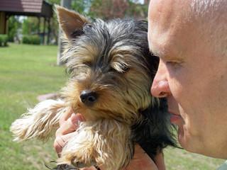 Betreuerische Möglichkeit mit Tieren auf dem MartinsHof Grabow   Wohnen mit Pflege und Betreuung   Komfort-Service-Wohnen und Betreute Ferien im Ferienland Prignitz   Ferien-Wohnparadies für erwachsene Menschen mit Handicap