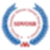 SDVOSB_Logo_CVE_completed_s.jpg