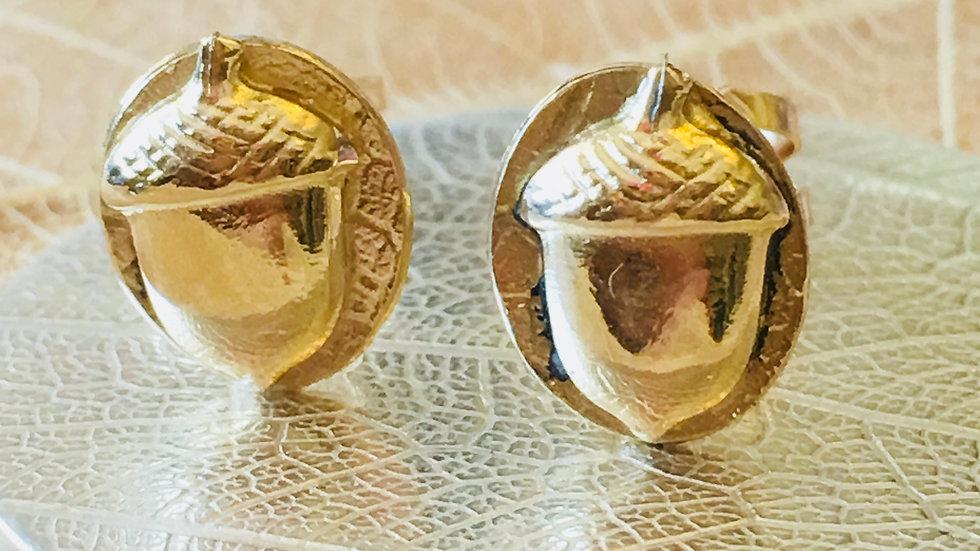 The Golden Acorn Earrings