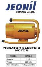 Jeonil Vibrator Electric Motor.jpg