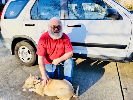On the Road Again - Jeff Fillgrove saves hundreds of dogs