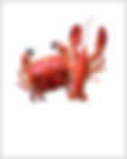 Crab-Lobster.png