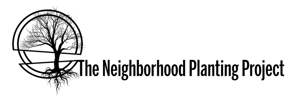 npp transparent logo.png