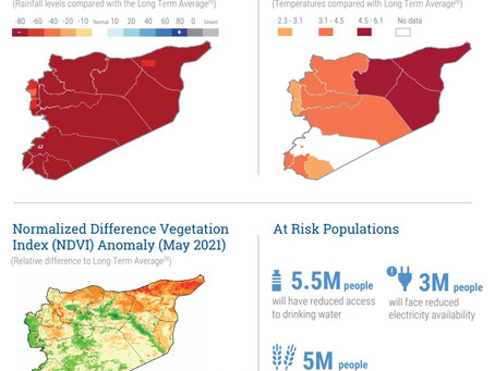 RISIKO FORECAST - DÜRRE IN SYRIEN