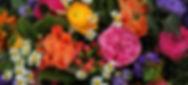 flowers_footer_edited.jpg