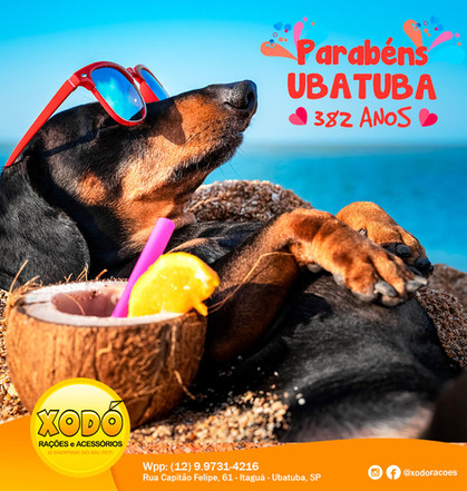 Redes Sociais para Pet Shop
