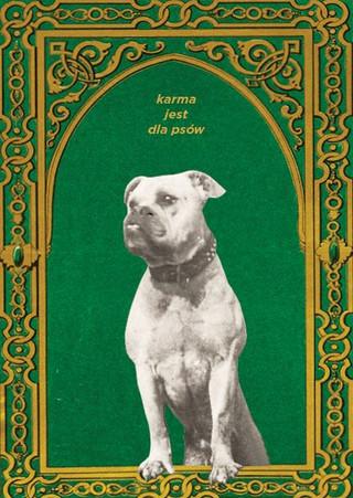 karma jest dla psów | kartki na złe okoliczności