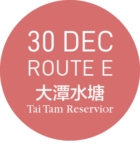 99bus @ 大潭 TAI TAM - ROUTE E- 30 DEC