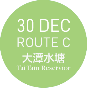 99bus @ 大潭 TAI TAM - ROUTE C-30 DEC