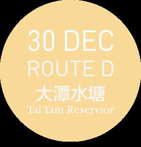 99bus @ 大潭 TAI TAM - ROUTE D-30 DEC