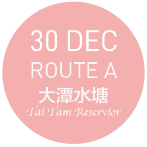 99bus @ 大潭 TAI TAM - ROUTE A- 30 DEC
