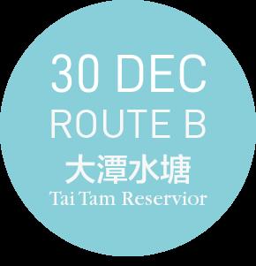 99bus @ 大潭 TAI TAM - ROUTE B- 30 DEC