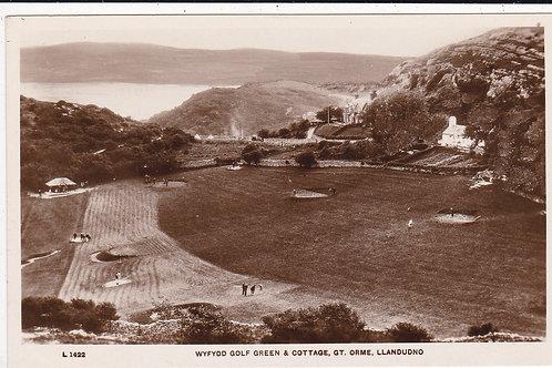 Wyfedd Great Orme Golf Green Ref.609