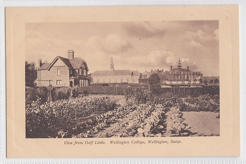 Wellington Golf Links,View from,Ref.2192a C 1905-10