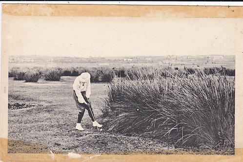 Westward Ho! Golf Links Ref.043
