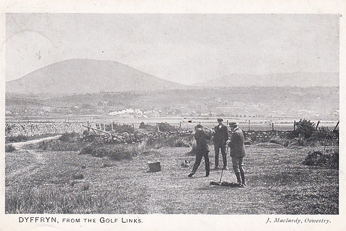 Dyffryn,(Barmouth) from The Links.Ref 619.C.1909