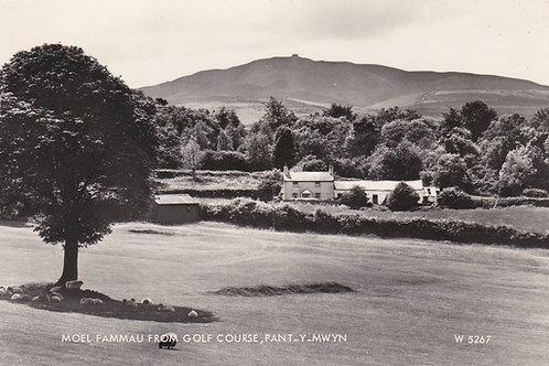Pant-y-Mwyn Golf Course,Mold Ref 083. C.1950s ?