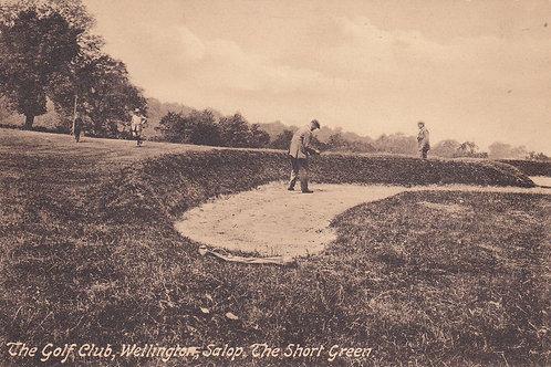 Wellington Golf Course.Ref 250 C.Pre 1914
