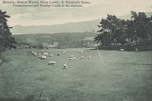 Bangor Golf Links St.Deiniol Ref 517 C.Pre 1914