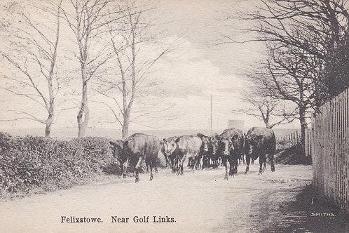 Felixstowe Golf Links (Near) Ref.1556a Pre 1914