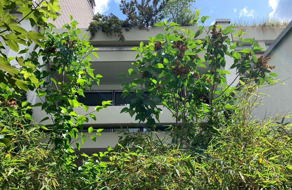 3 Zimmer Wohnung: München-Nymphenburg