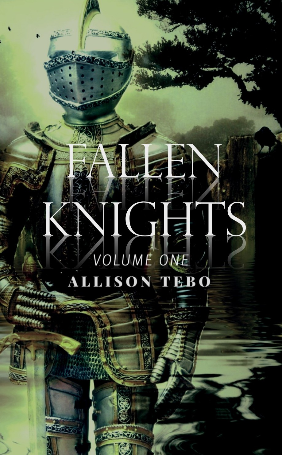 Fallen Knights shadow