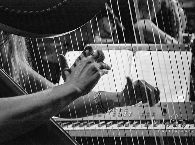Live harpist