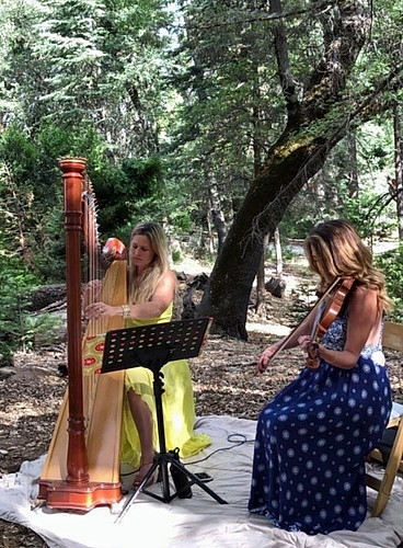 Harp with violin