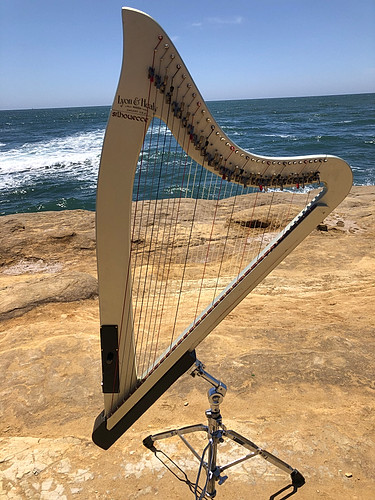 Eletric harp