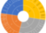 Digital Maturity Compass_Organisational