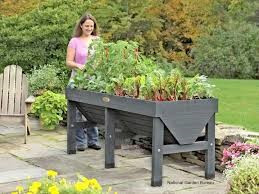 Gardening is a healthy Balm for Chronic pain and Stress Relief!