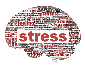 Stress and ILLNESS: What's the Connection?