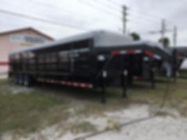Stoll 32 Black Livestock March 2020.jpg