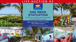 Auction file-3