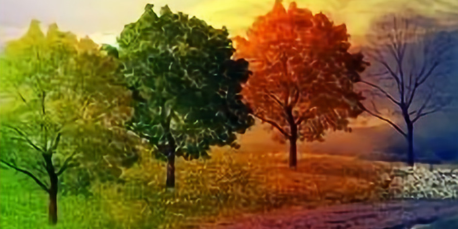 AGM and TALK: Colour Through the Seasons with David Miller