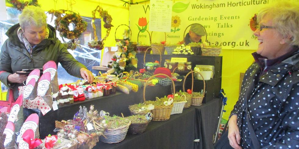 Wokingham Winter Carnival
