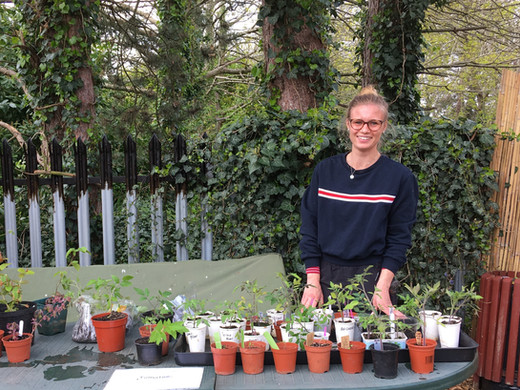 Catherine and tomato plants.JPG