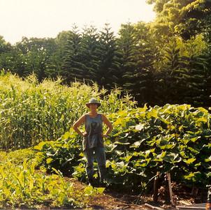 Summer Garden Corn_Squash.jpg