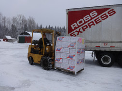 Snowy.Day.Caleb.Pallet.Ross.Express.3.1.