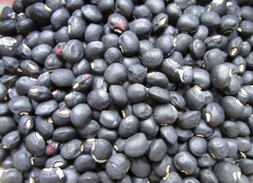 Peking Black Southern Pea