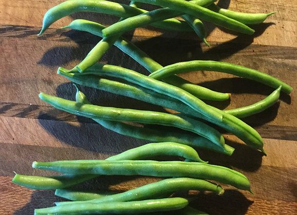 'Alan Chadwick Blue Lake' Green Pole Bean