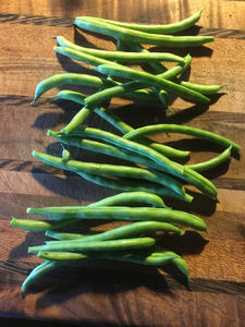 The Tall and The Short of Green Bean Growing in Hawai'i